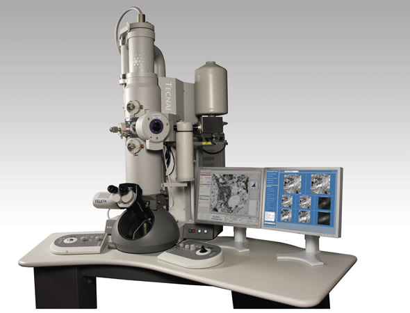 Tecnai Transmission Electron Microscope from FEI : Get Quote, RFQ.