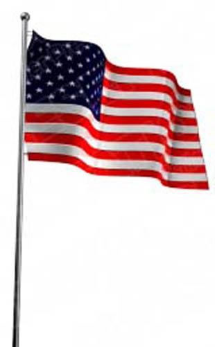 American flag and eagle transparent clip art image.