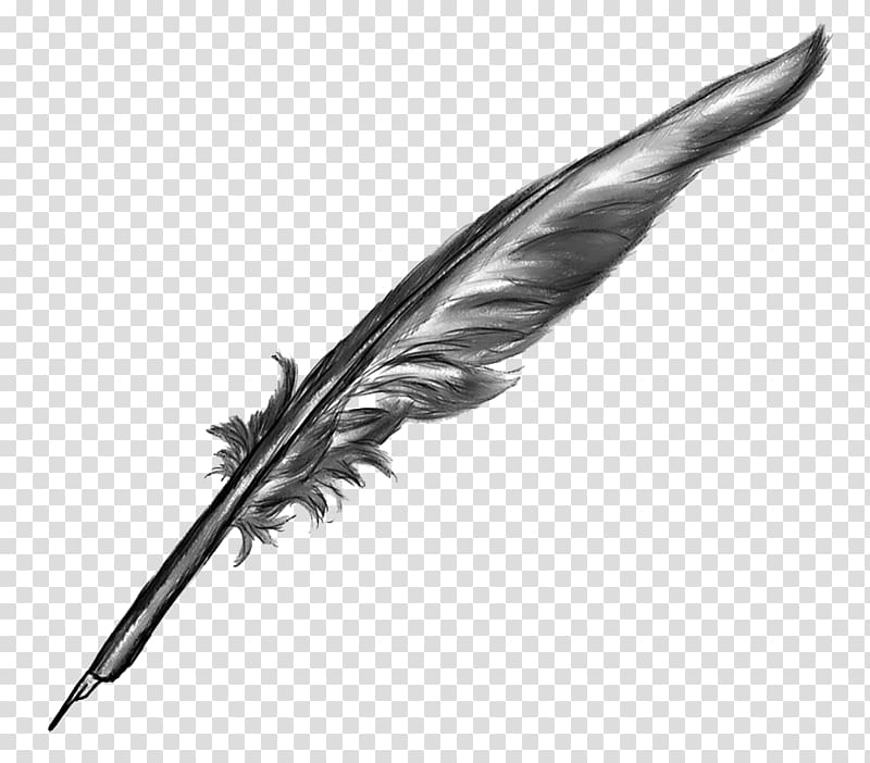 Black and gray feather illustration, Quill Paper Inkwell.
