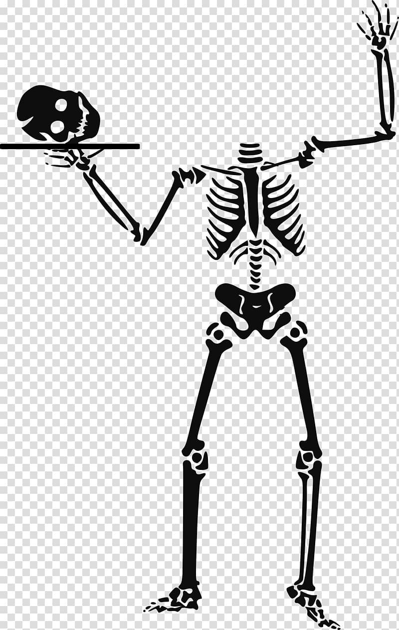 Halloween Human skeleton , Halloween Skeleton transparent.