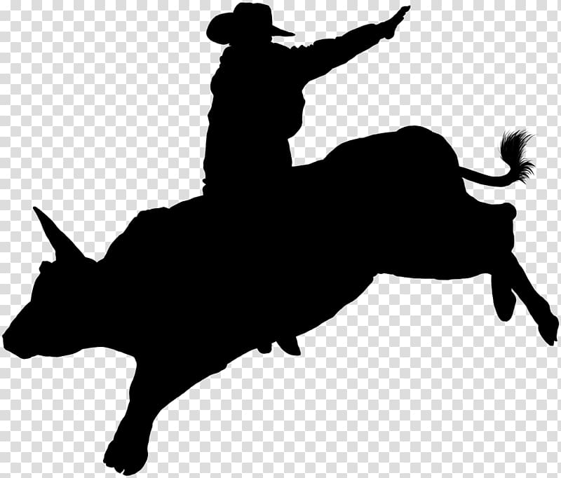 Cattle Bull riding Professional Bull Riders Rodeo Decal.