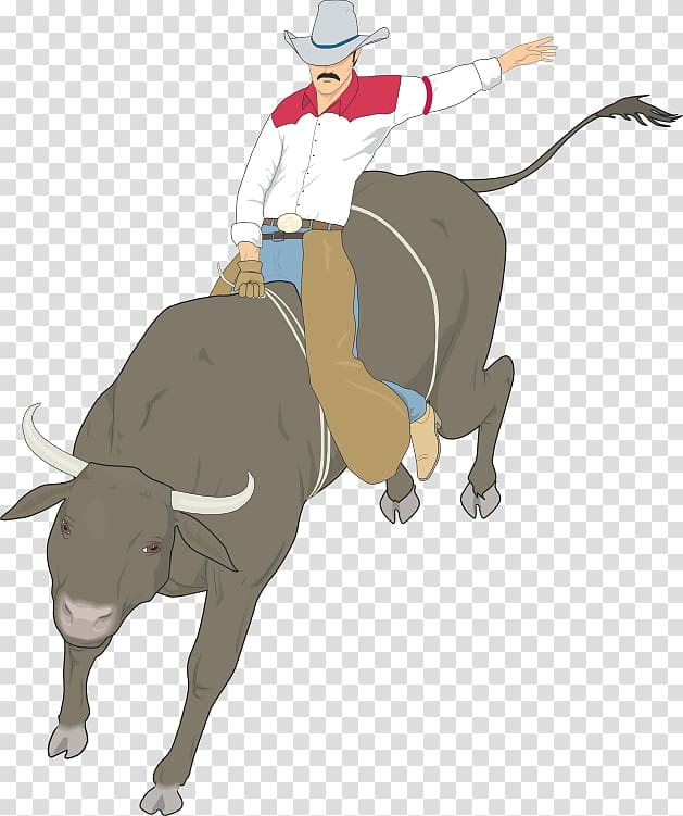 Cattle Bull riding Rodeo , bull transparent background PNG.
