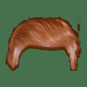 Donald Trump Hair transparent PNG.