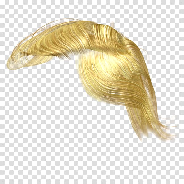 Hair , wig transparent background PNG clipart.