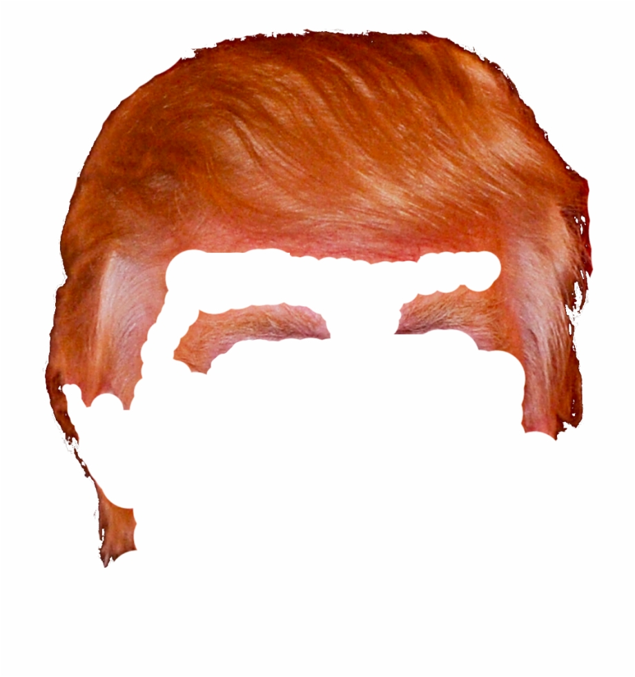Donald Trump Hair Png Donald Trump Hair Png.