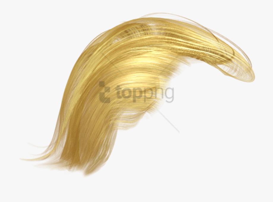 Donald Hair Transparent.
