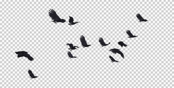 13 Black Birds Flying Over Screen III by VarioFocus.