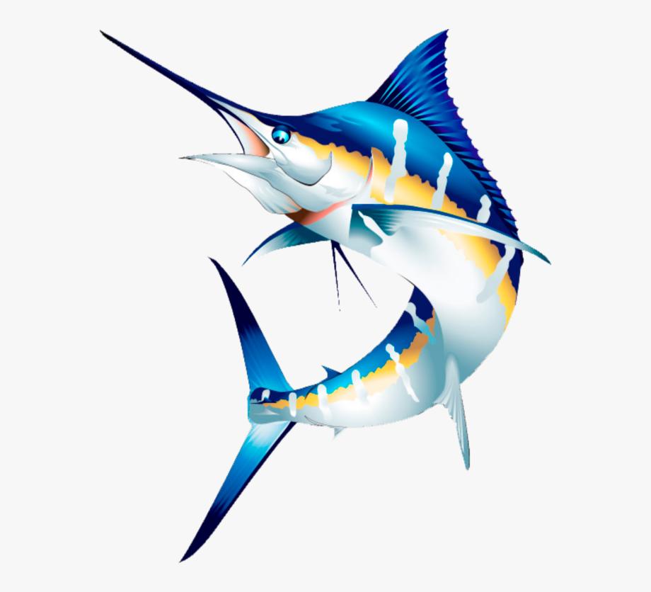 mq #blue #fish #swordfish #water.