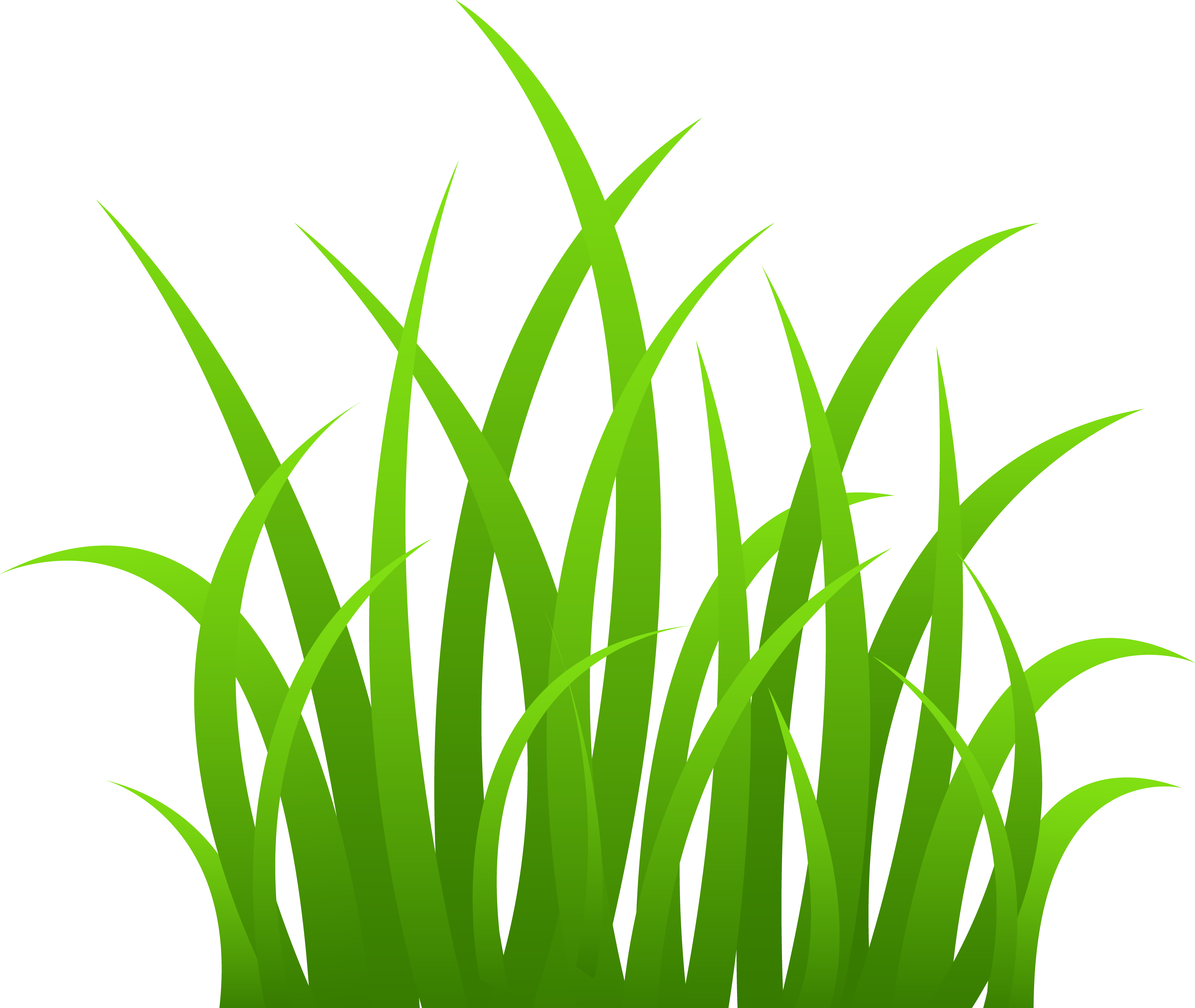 Grass clipart transparent background.