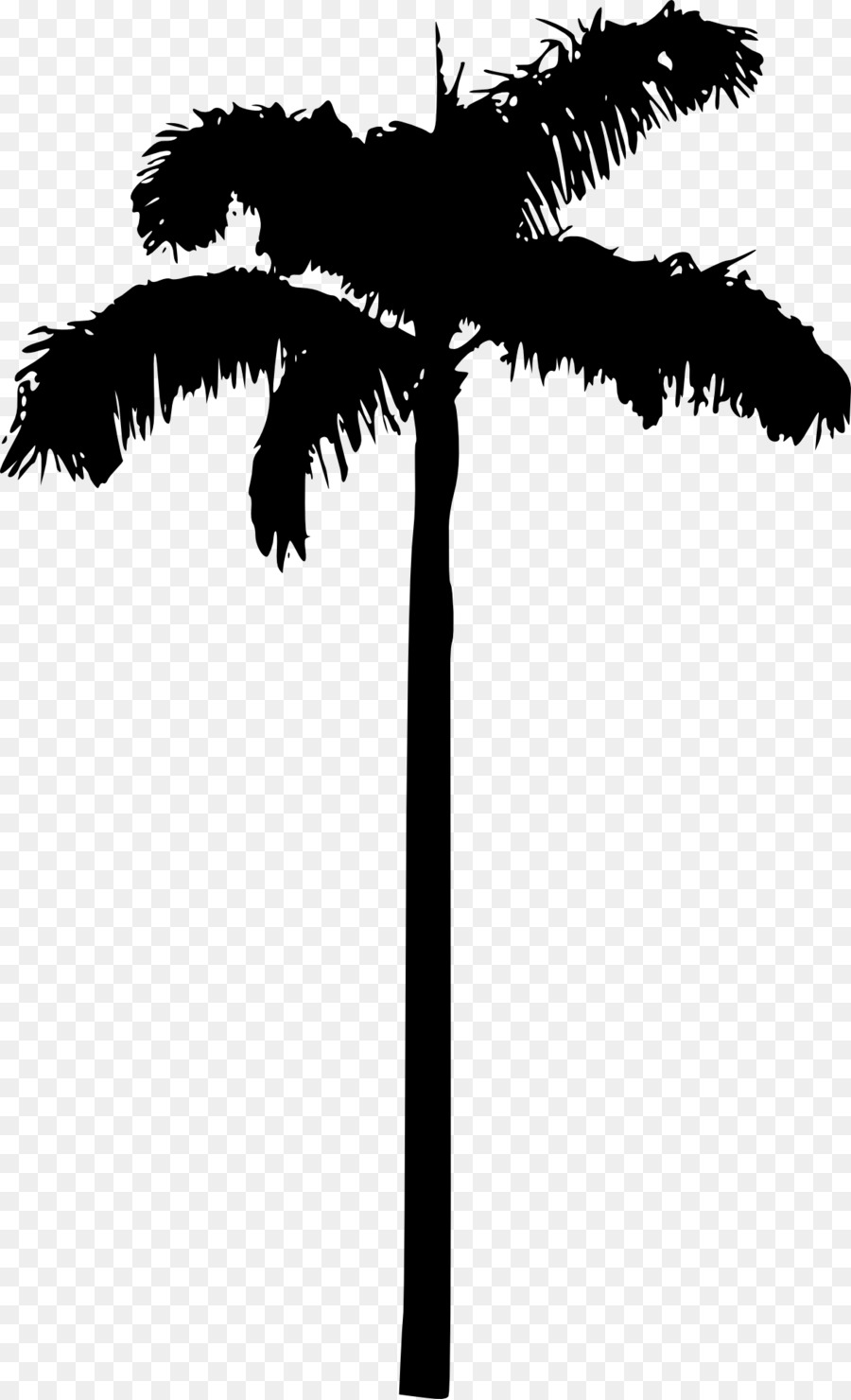 Black And White Palm Tree Wallpaper.