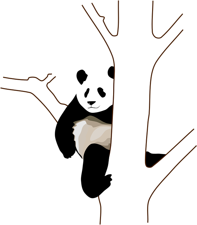 Free vector graphic: Panda, Tree, Branch, Sitting, Climb.