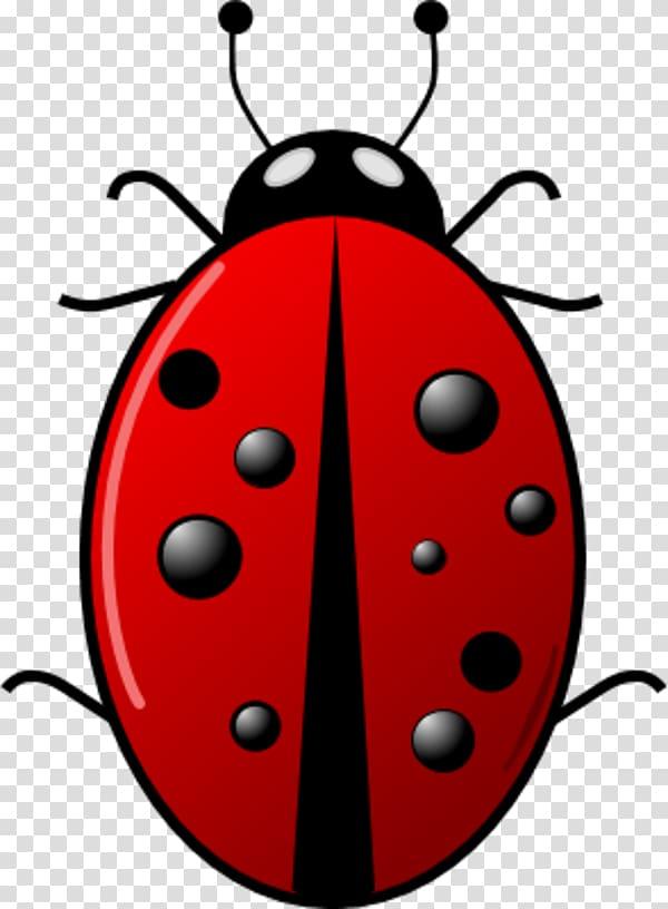 Beetle Ladybird Green , Cartoon Ladybug transparent.