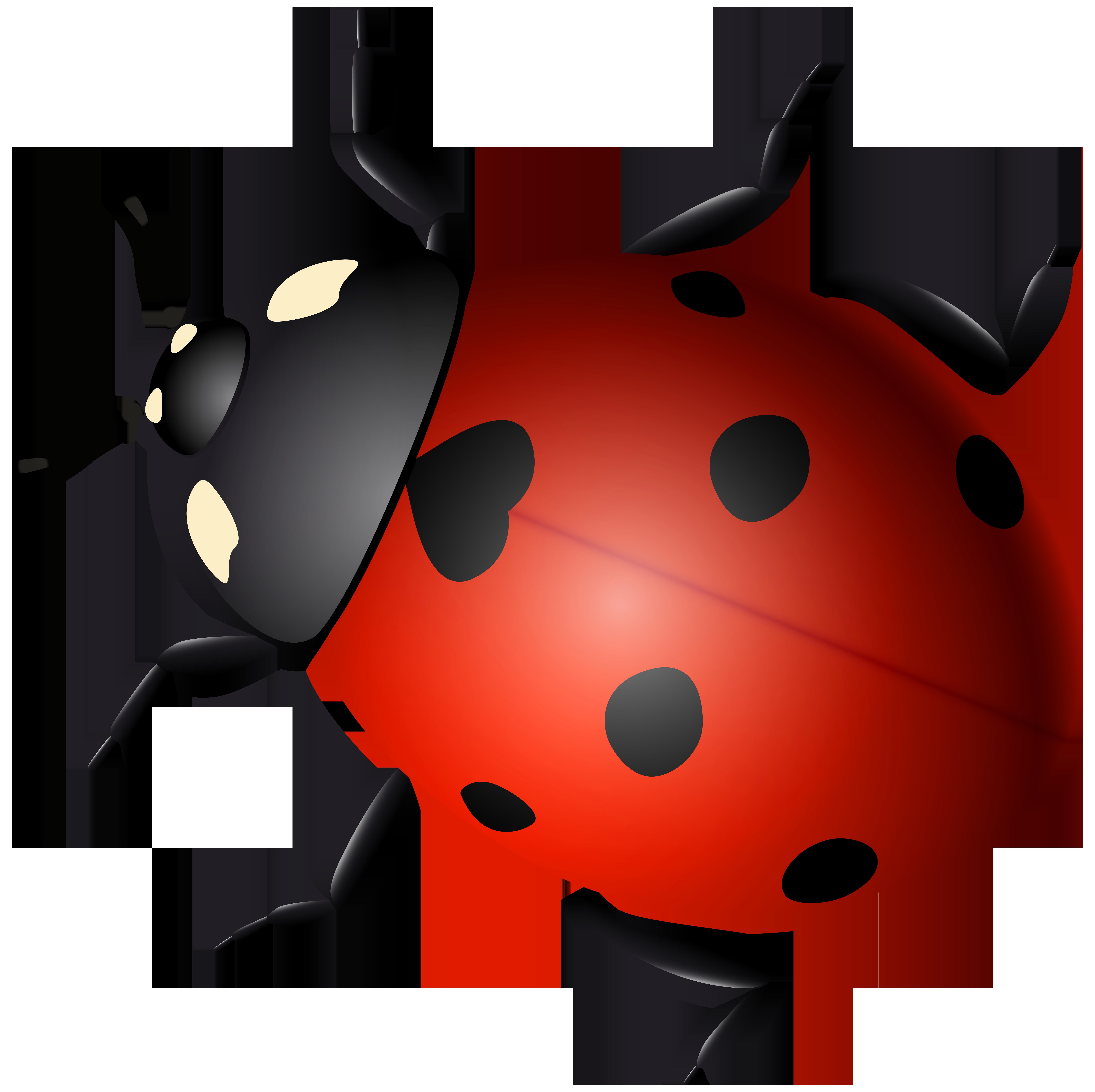 Ladybird Beetle Clip art.