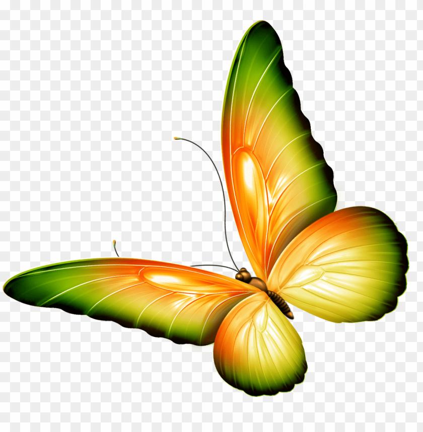 deviantart logo clipart butterfly png.