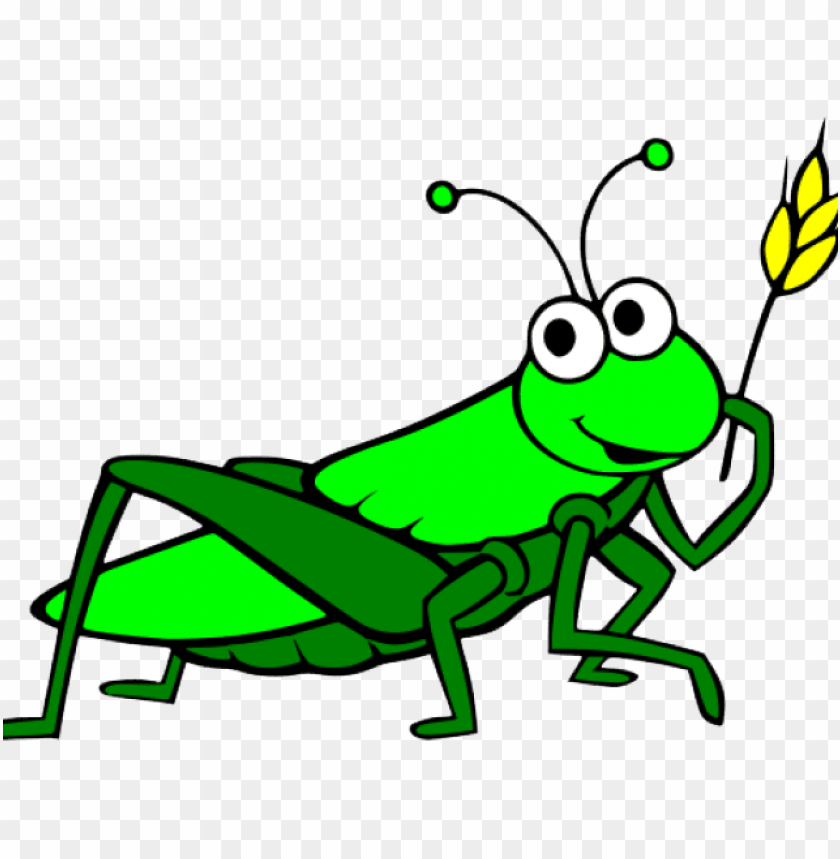 clip freeuse download grasshopper clipart cartoon.
