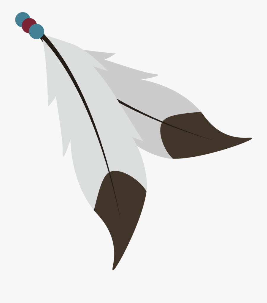 Native American Feathers Png.