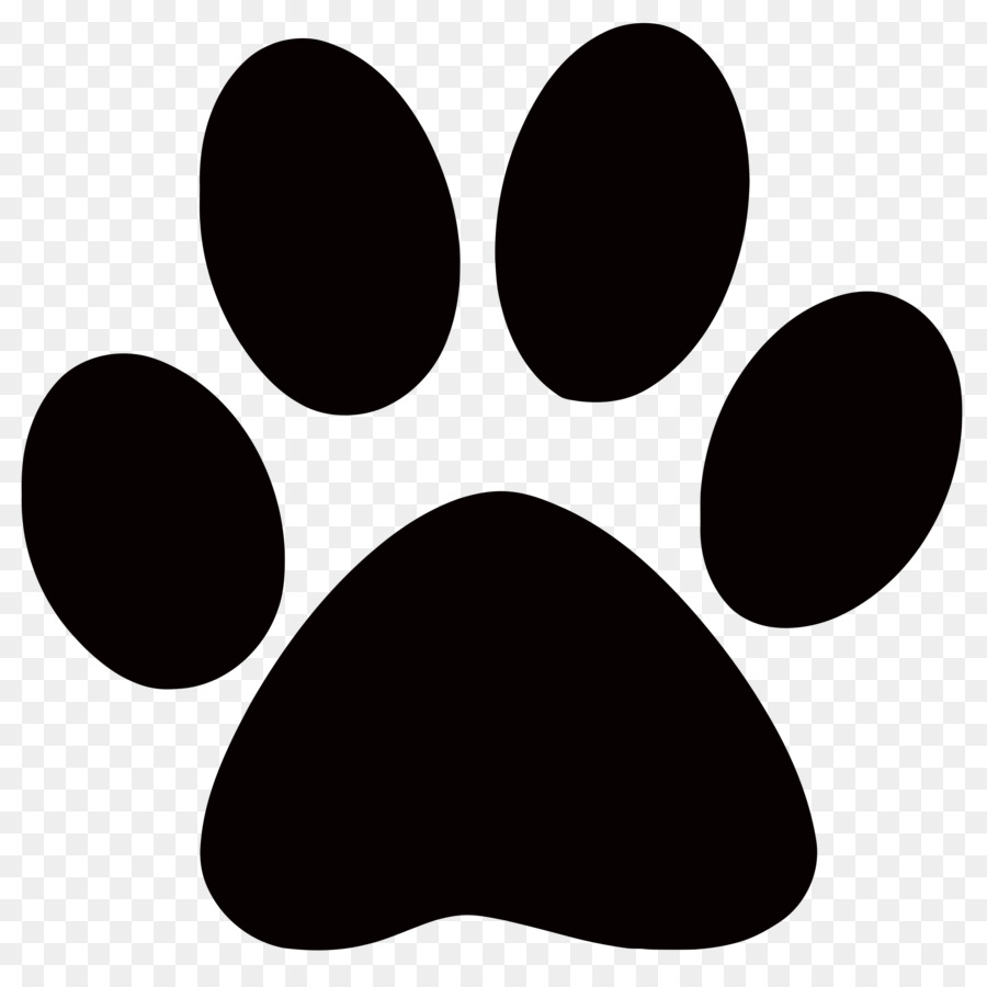 Free White Paw Print Transparent Background, Download Free.