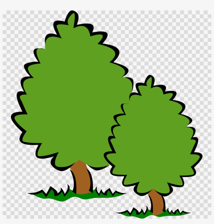 Trees No Background Clipart Desktop Wallpaper Clip.