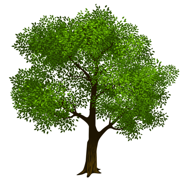 Transparent Green Tree Clipart Picture.