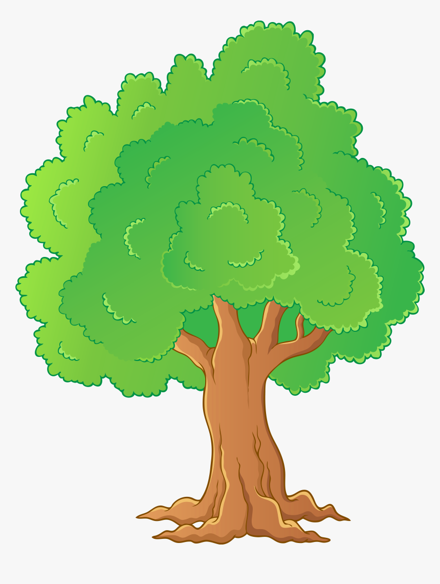 Image Freeuse Tree Png Transparent Clip Art Gallery.