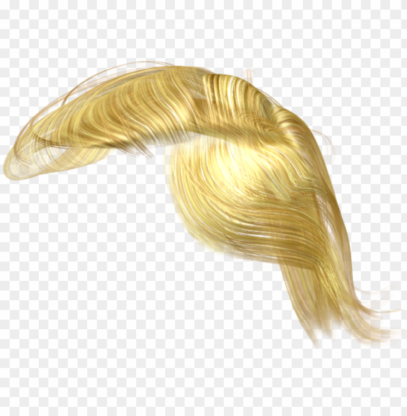 trump hair clipart stock.