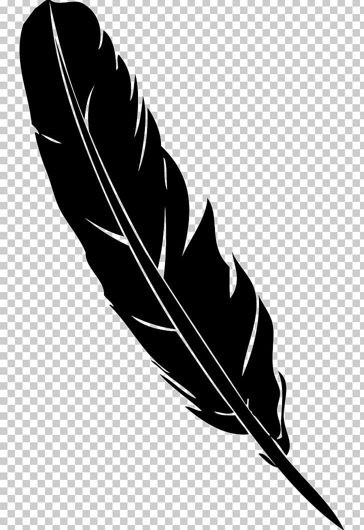 Feather Pen Quill Euclidean PNG, Clipart, Adobe Illustrator.