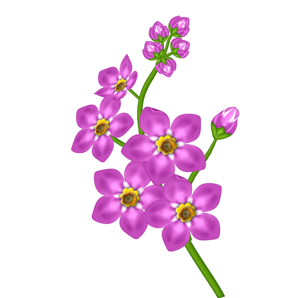 Pink Flower Transparent Clipart.