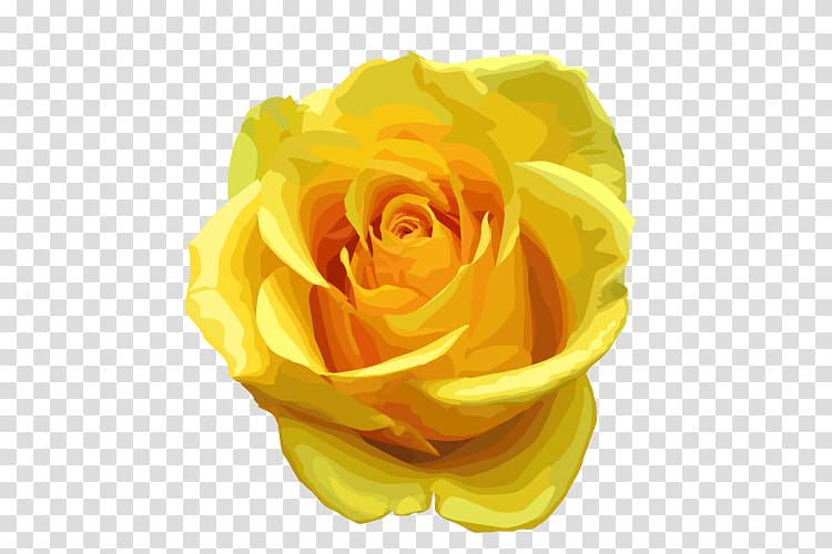 Rose Yellow , Yellow Rose transparent background PNG clipart.