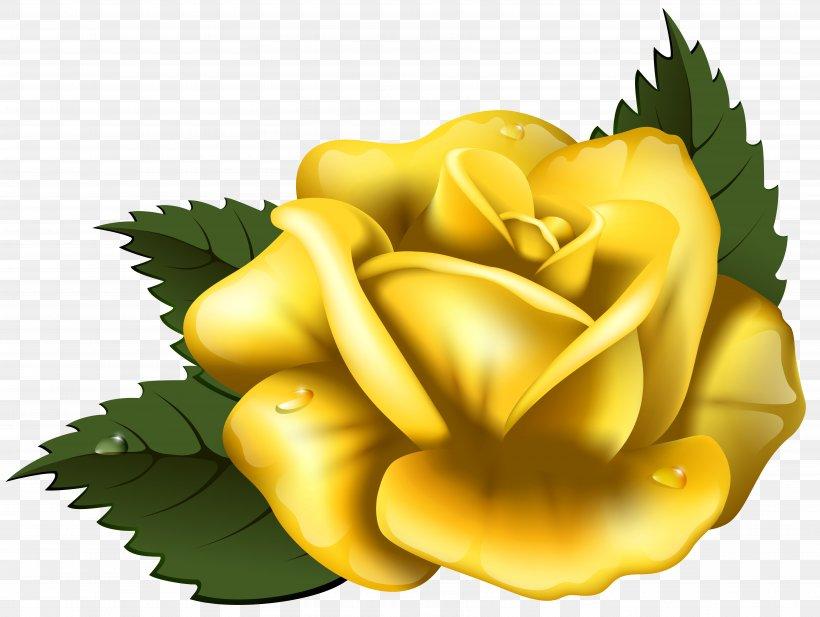 Rose Yellow Clip Art, PNG, 7013x5280px, Yellow, Art, Blog.