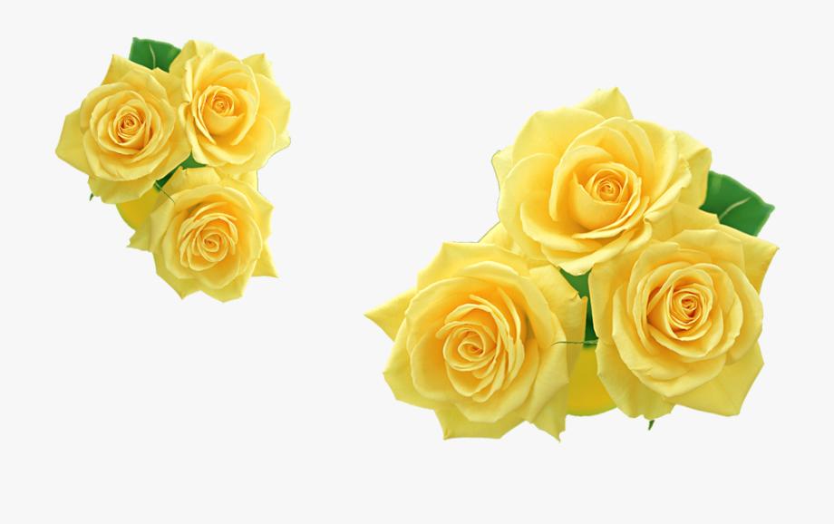 Rose Yellow Flower Clip Art.