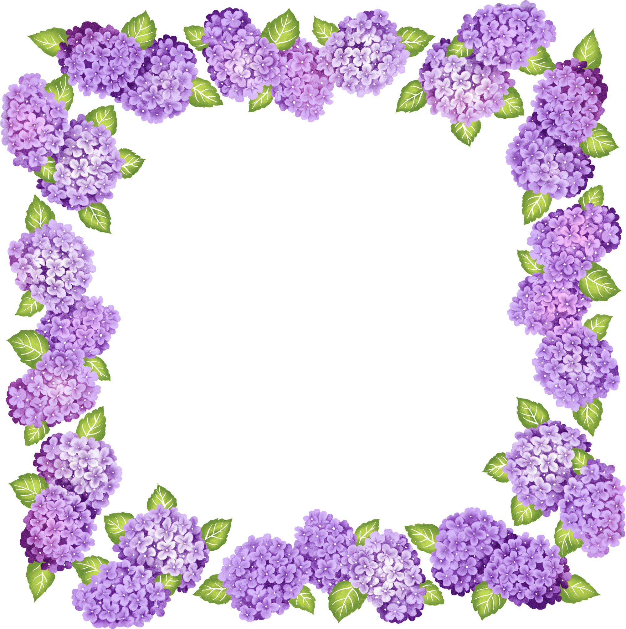 transparent frame clipart.