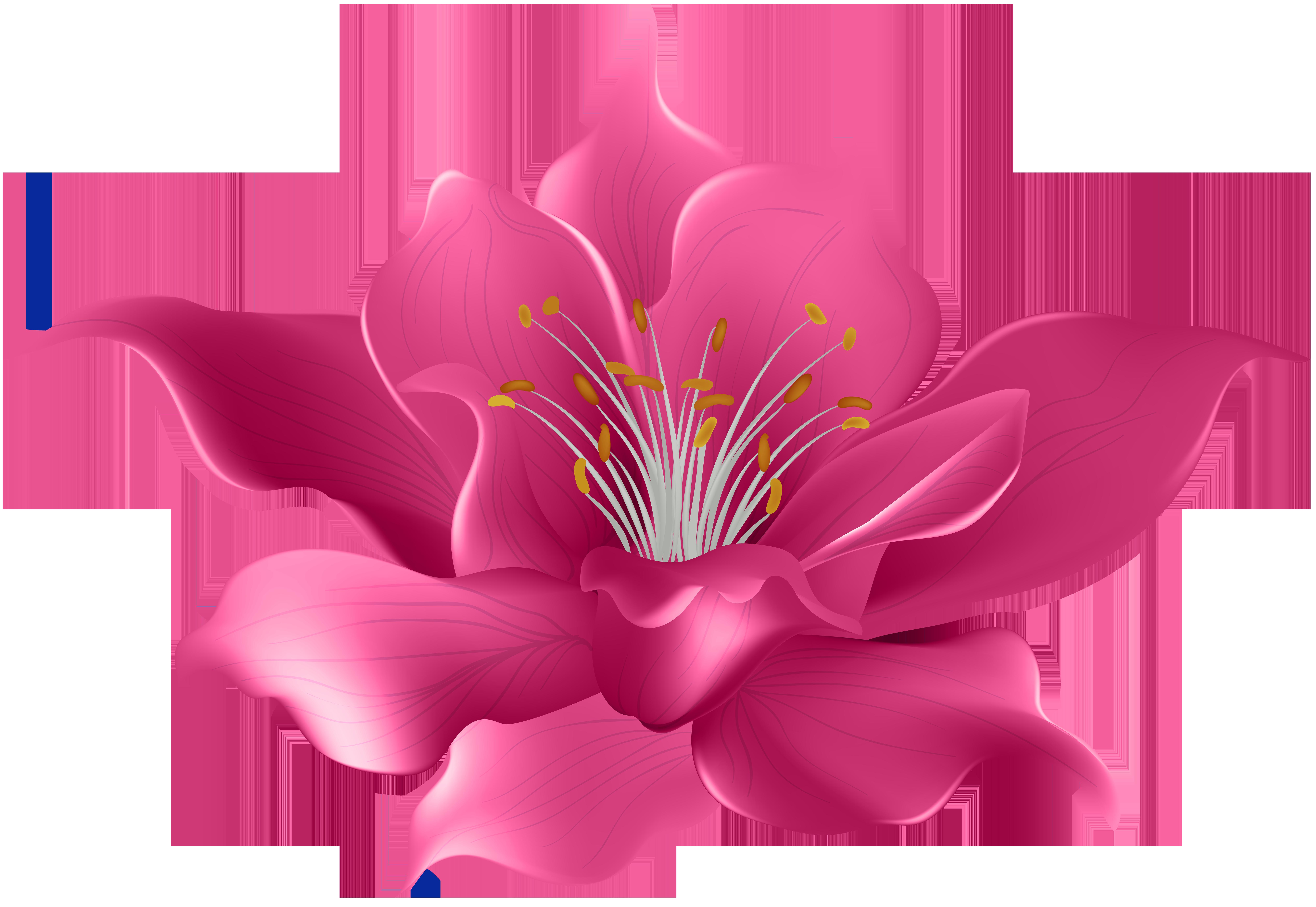Pink Flower Transparent Clip Art Image.