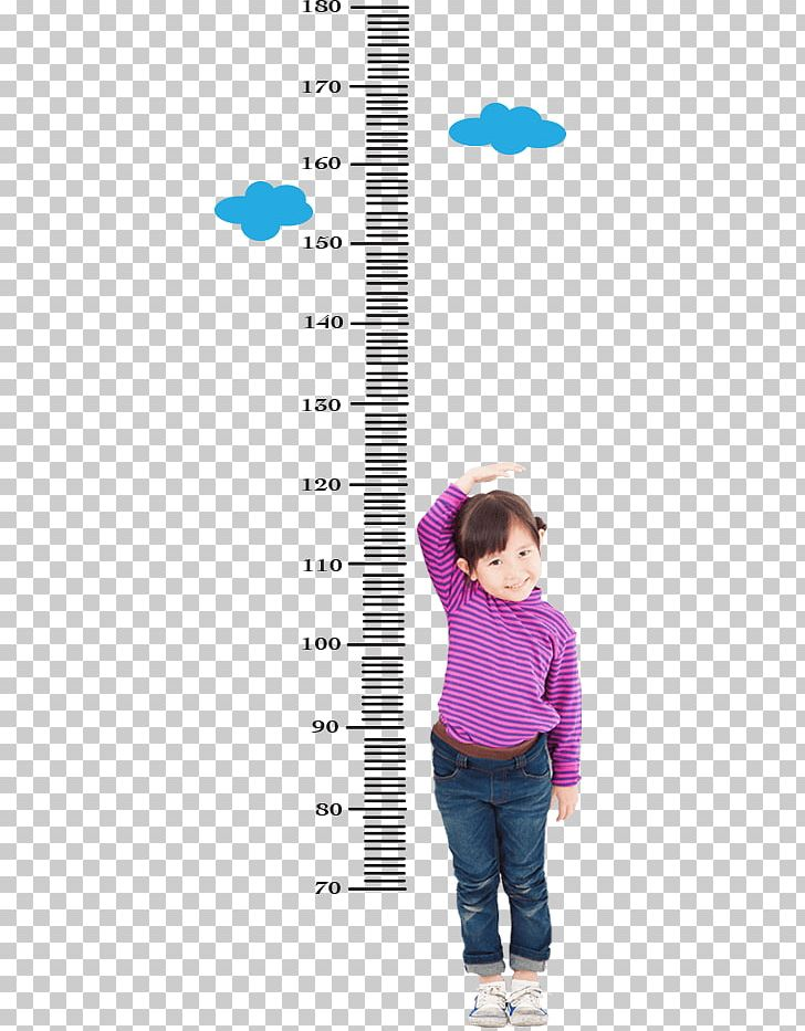 Toddler Human Height Growth Chart Child Measurement PNG.