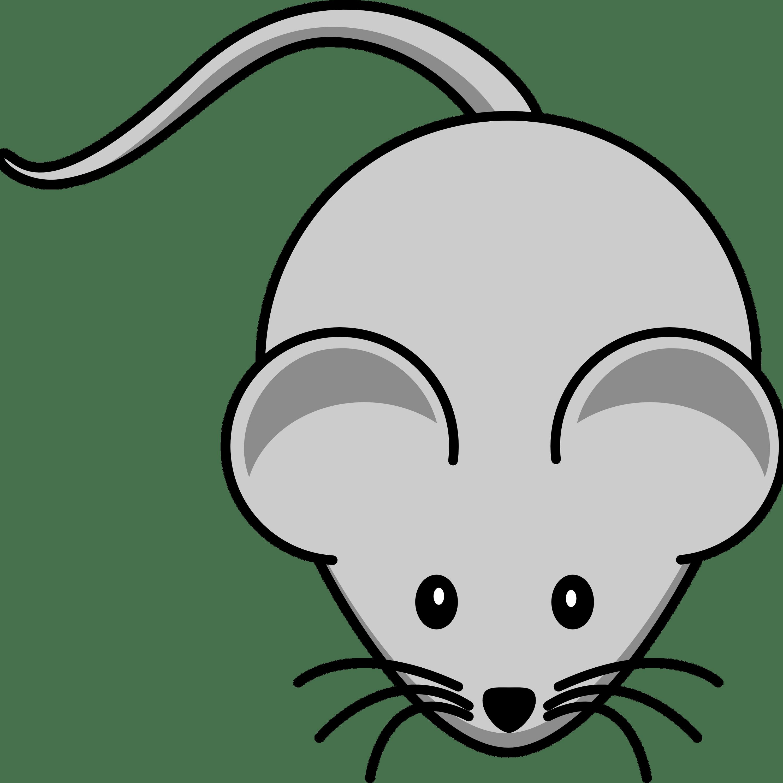 Mouse Clipart transparent PNG.