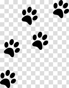 Cat Paw Prints transparent background PNG clipart.