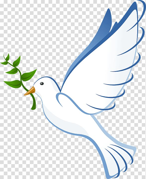 White bird , Peace Dove transparent background PNG clipart.