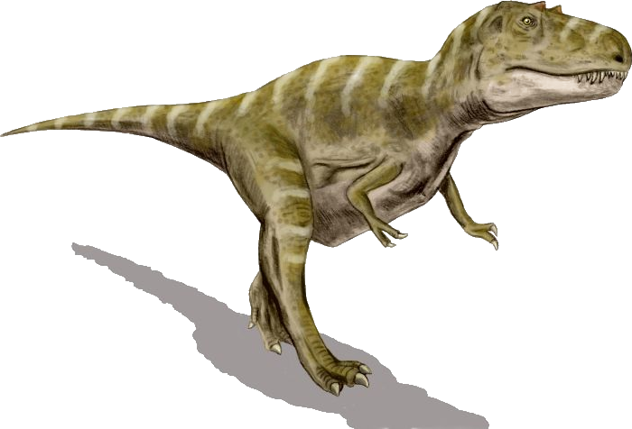 File:Gorgosaurus BW transparent.png.
