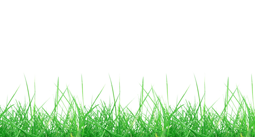 Green grass meadow isolated over transparent background PNG.