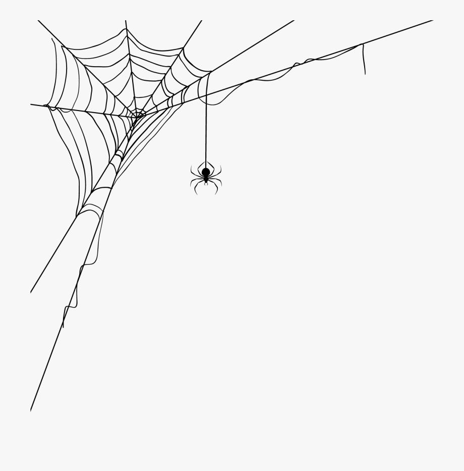 Corner Spider Web Transparent Background #2776975.