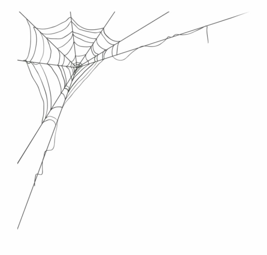 Free Corner Spider Web Png, Download Free Clip Art, Free.