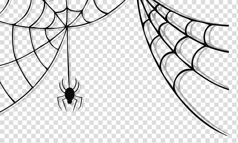 Gray spider and spiderweb illustration, Spider web Spider.
