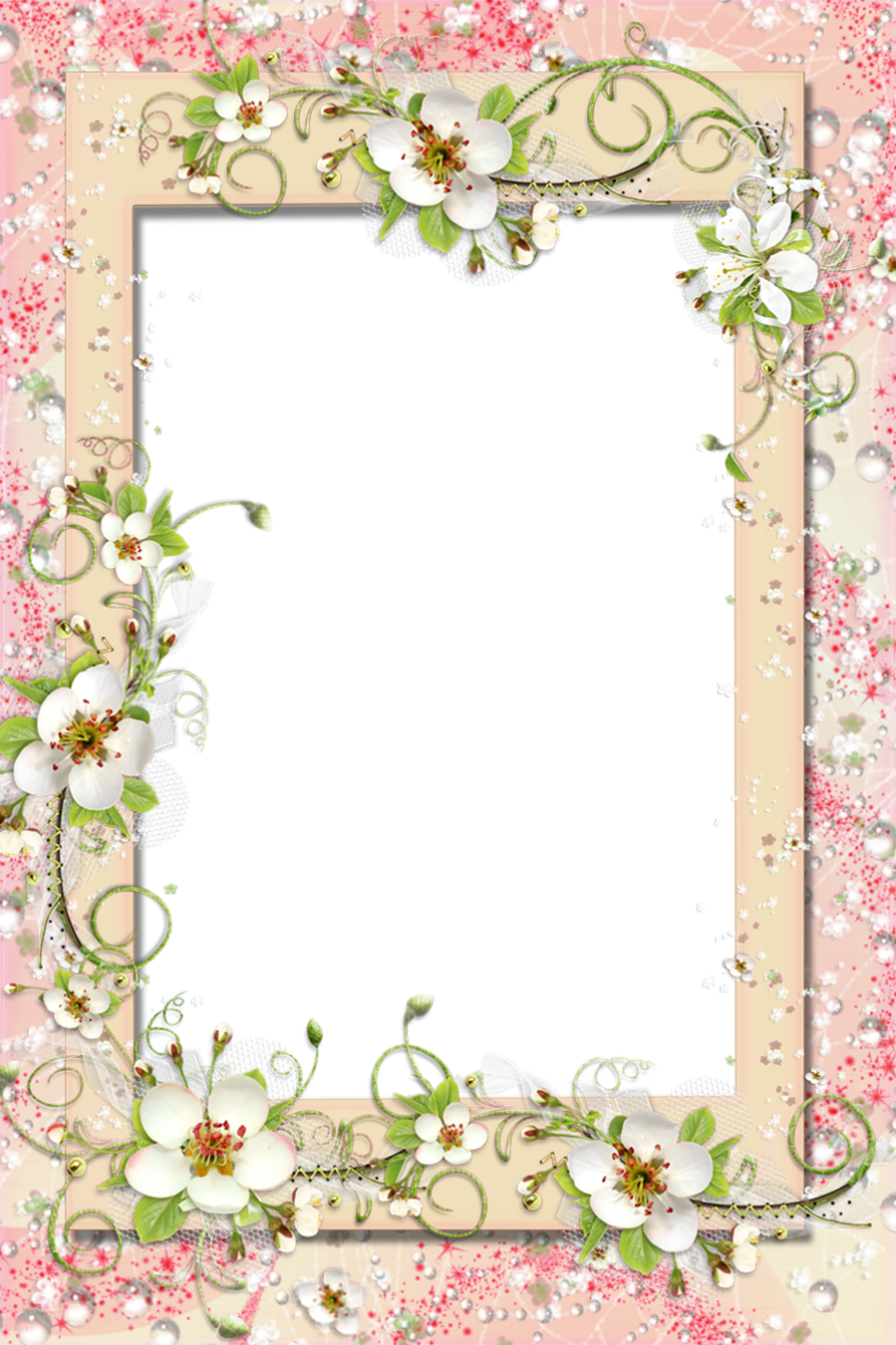 Free Transparent Frame Clipart, Download Free Clip Art, Free.