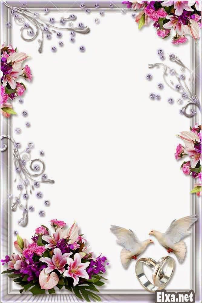Wedding Frame PNG Images Transparent Free Download.