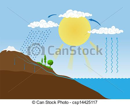 Transpiration Clipart Vector and Illustration. 49 Transpiration.