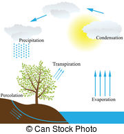 Transpiration Illustrations and Clip Art. 62 Transpiration royalty.