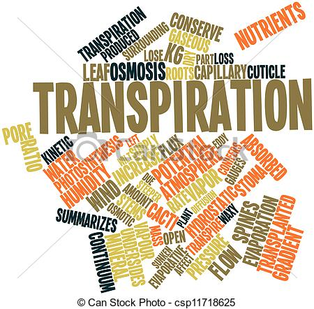 Clip Art of Transpiration.