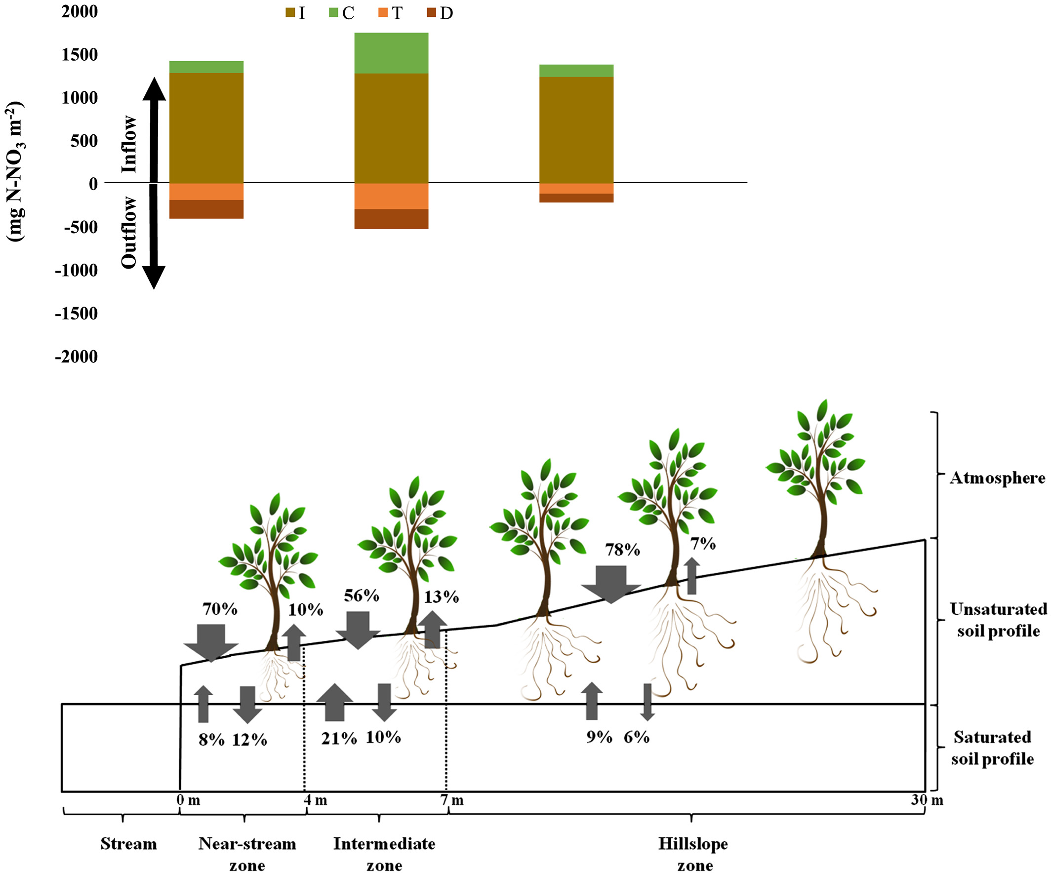 Riparian forest transpiration under the current and.
