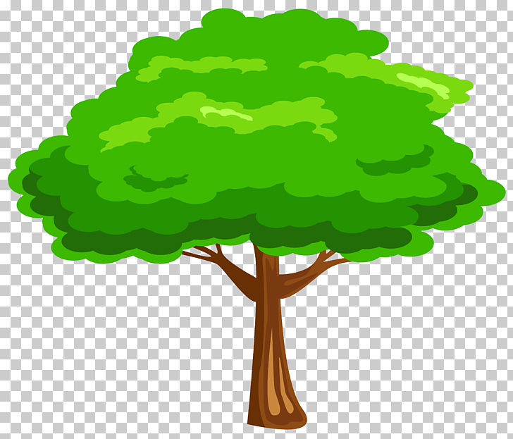 Root Tree Drawing , root, green and black tree PNG clipart.