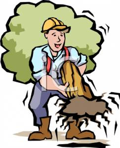 tree workers cartoon and clipart #18