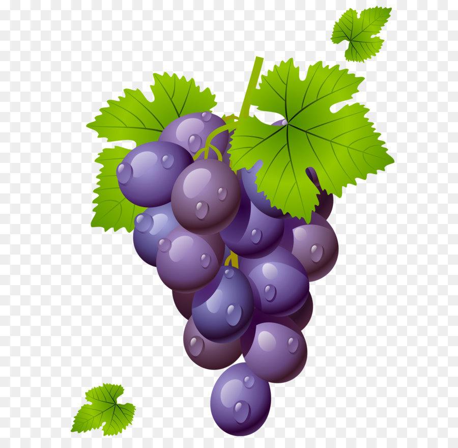 Wein Weinrebe Trauben Blätter clipart.